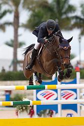 Babington Kevin (IRL) - Mark Q<br /> Horseware GP CSI 2*<br /> Wellington 2012<br /> © Hippo Foto - Cealy Tetly