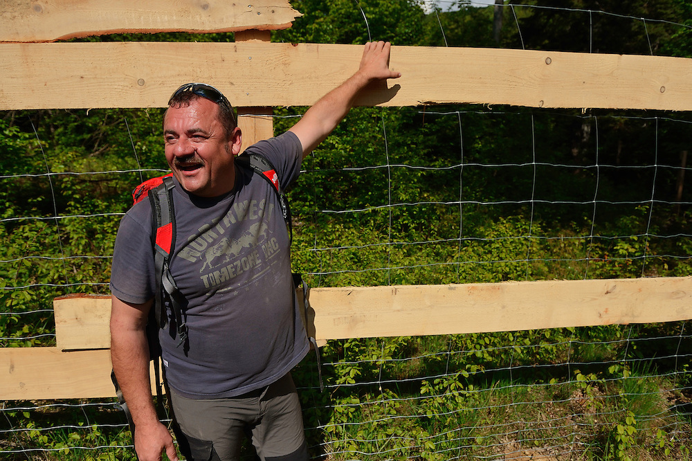 Sandu Bulacu shows the fencing for the quarantine area for European bison, Bison bonasus, in the Tarcu mountains nature reserve, Natura 2000 area, Southern Carpathians, Romania. The release was actioned by Rewilding Europe and WWF Romania in May 2014.