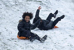 © Licensed to London News Pictures. 24/01/2021. London, UK. Members of the public sled in a snowy Greenwich park in South East London. Snow is expected for large parts of the UK and a yellow weather warning is in place in parts of England. Photo credit: George Cracknell Wright/LNP