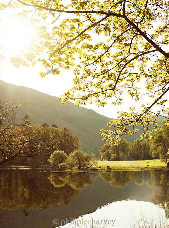 Rural countryside around a lake near Ullswater, Lake District, UK