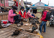 Selling chickens and ducks on Rue Andriamanelo, Antananarivo, Madagascar.