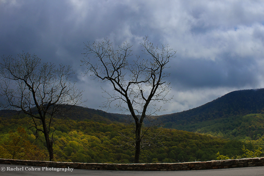 """""""Storm at Gooney Manor""""<br /> <br /> Gooney Manor overlook along Skyline Drive. A scenic and stormy spring view of the Blue Ridge Mountains!!<br /> <br /> The Blue Ridge Mountains by Rachel Cohen"""