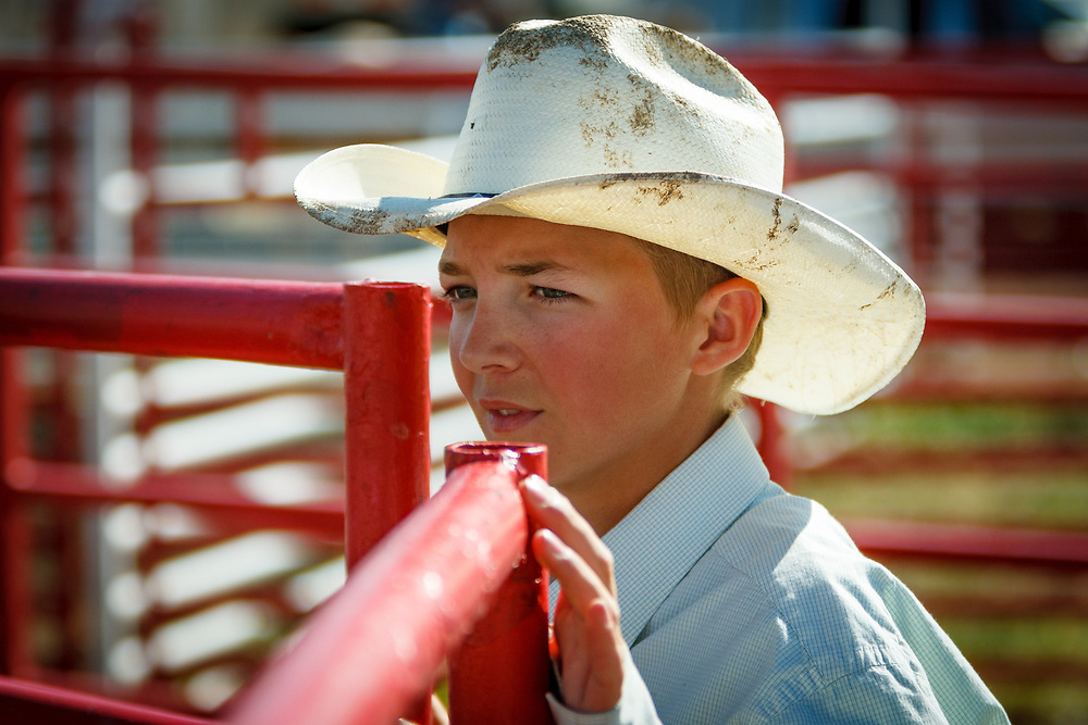 Fourteen year-old Toe (young volunteer) DANIEL KINDSVATER sorts stock during Cheyenne Frontier Days, the world's largest outdoor rodeo.