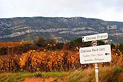 Chateau Ciceron, Ch Pech Latt, Corbieres Crus Signes, Agriculture Biologique, Chateau Pech-Latt. Near Ribaute. Les Corbieres. Languedoc. The vineyard. France. Europe. Vineyard.