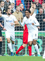 Football — 2016 / 2017 Premier League - Swansea vs Liverpool<br /> <br /> Leroy Fer of Swansea City scores his team's first goal at the Liberty Stadium.<br /> <br /> pic colorsport/winston bynorth