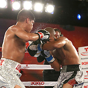 Ricardo Rodriguez (L) lands a left to the head of Jonathan Vidal during a Telemundo Boxeo boxing match at the A La Carte Pavilion on Friday,  March 13, 2015 in Tampa, Florida.  Rodriguez won the bout. (AP Photo/Alex Menendez)