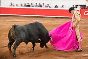 Mexican Matador Arturo Macias presents his cape to the bull during a bullfight at the Plaza de Toros in San Miguel de Allende, Mexico.
