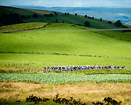 Tour of Britain 2013 - Stage 5 - Wales - 177km