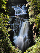 D'Alton Falls, along the Overland Track, in Cradle Mountain-Lake St Clair National Park, Tasmania, Australia. The Tasmanian Wilderness was honored as a UNESCO World Heritage Site in 1982, expanded in 1989. The famous Overland Track features mountains, temperate rainforest, wild rivers, alpine plains, abundant birds, and other wildlife.