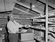 9305-B7381-2. Judd Frank (Nez Perce) making pies at the last Feast of the First Salmon at Celilo Village before Celilo Falls were permanently submerged by the backwater of The Dalles Dam. Photo taken April 29, 1956.