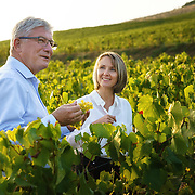 Back in Epérnay, the cultural heart of Champagne, Deschamps is passing on the baton to his successor, the first female cellar master to run Perrier-Jouët. Séverine Frerson prepares to take over the role of cellar master from Hervé Deschamps at champagne Perrier-Jouët. They are meeting at a chardonnay vineyard.Frerson will be the first woman at the helm in a row of seven male cellar masters before her. Founded in 1811 in Epernay, Maison Perrier-Jouët is one of France's most historic champagne houses, but also one of its most distinctive, renowned for its floral and intricate champagnes which reveal the true essence of the Chardonnay grape. Started in 1811, its cellars holds the world's two oldest known bottles of champagne, the 1825 vintage.