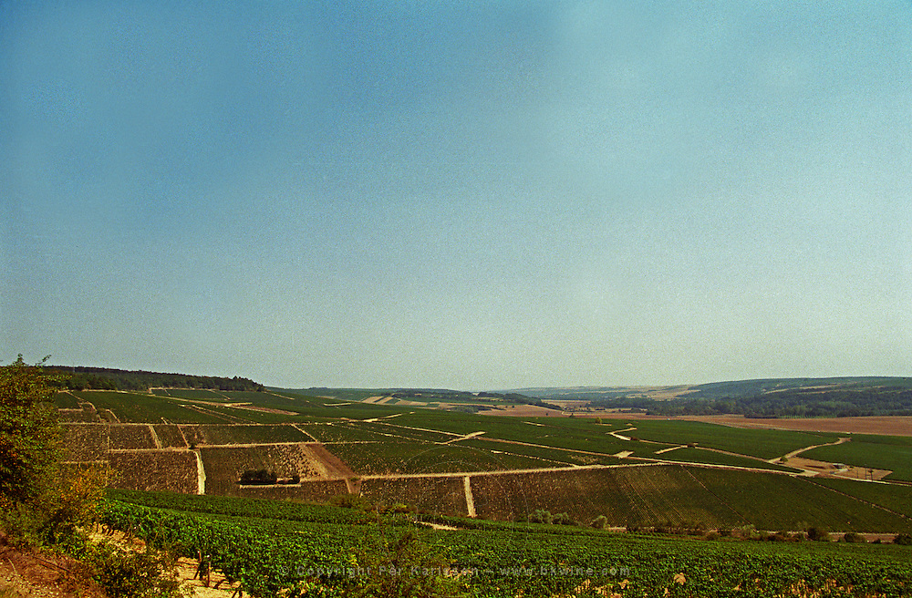 The view from the top of the Chablis grand cru hill - west, over Blanchot and with a view over Montee de Tonnerre premier cru