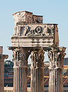 Detail at the Roman Forum, Rome, Italy.