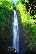 Manoa Falls, Oahu, Hawaii<br />