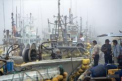Shrimp Boats At Hamahata