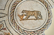 Picture of a Dionysiac Roman mosaics design depicting a panther in front of a wine crater, from the ancient Roman city of Thysdrus. 3rd century AD. El Djem Archaeological Museum, El Djem, Tunisia. .<br /> <br /> If you prefer to buy from our ALAMY PHOTO LIBRARY Collection visit : https://www.alamy.com/portfolio/paul-williams-funkystock/roman-mosaic.html . Type - El Djem - into the LOWER SEARCH WITHIN GALLERY box. Refine search by adding background colour, place, museum etc<br /> <br /> Visit our ROMAN MOSAIC PHOTO COLLECTIONS for more photos to download as wall art prints https://funkystock.photoshelter.com/gallery-collection/Roman-Mosaics-Art-Pictures-Images/C0000LcfNel7FpLI