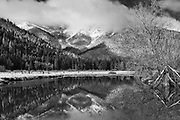 Grizzly Ridge, Winter Scenes, Reflection Pool, Cool Water Pools, Genesee Valley Ranch, Black and White Art, Willow, Livestock Pond, Black and White Photography, California Mountains, Sierra Nevada Mountains
