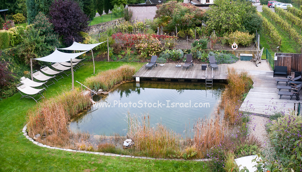 Ecological swimming pool. Plants are used to keep the water clean Photographed in Austria
