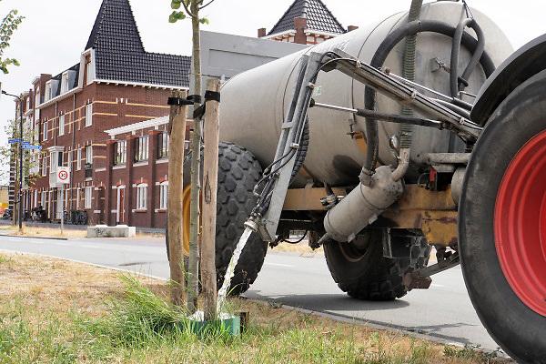 Nederland, Nijmegen, the netherlands, 1-8-2018Een hoveniersbedrijf geeft extra water aan jonge aanplant . Zij hebben contractueel de eerste drie jaar onderhoudsplicht, en het is goedkoper de vele tientallen boompjes bij te wateren dan ze te laten verdrogen en opnieuw aan te planten. Het water wordt in de nacht opgepompt en opgeslagen in een container .Foto: Flip Franssen