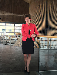 Ukip's new leader Diane James at the Welsh Assembly in Cardiff, as she hopes she can unite her party's Welsh Assembly Members amidst a bitter row between two of its most senior figures.