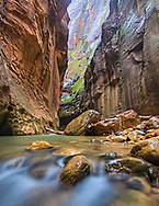 Light reflects down the rock walls of the Narrows over the Virgin River below.
