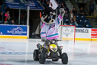KELOWNA, CANADA - OCTOBER 14: Rocky Raccoon, the mascot of the Kelowna Rockets enters the ice against the Saskatoon Blades on October 14, 2016 at Prospera Place in Kelowna, British Columbia, Canada.  (Photo by Marissa Baecker/Shoot the Breeze)  *** Local Caption *** Rocky;