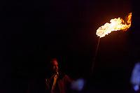 Burner and Flame