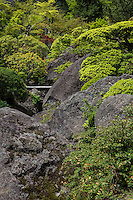 """Though the main attraction at Hakone Museum of Art is the renowned moss garden, the museum also features a landscape garden - Sekiraku-en only open on certain weekends, national holidays and during the month of November. The garden extends over the slopes of Gora, with large decorative stones, a stream with the """"borrowed scenery"""" backdrop of the valley and mountains."""