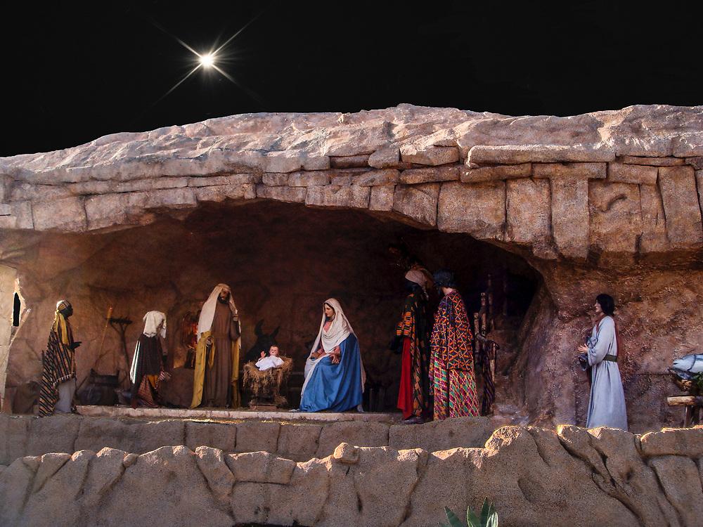 Nativity Scene At The Vatican