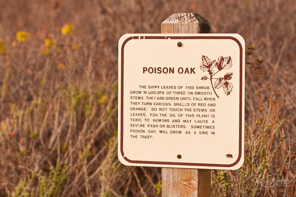 Poison oak warning on the Cypress Grove Trail, Point Lobos State Reserve, Carmel, California