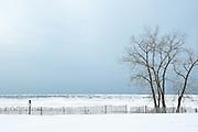 Sandy Island Beach State Park in winter