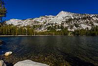 Tenaya Lake on Tioga Pass, Yosemite National Park, California USA.