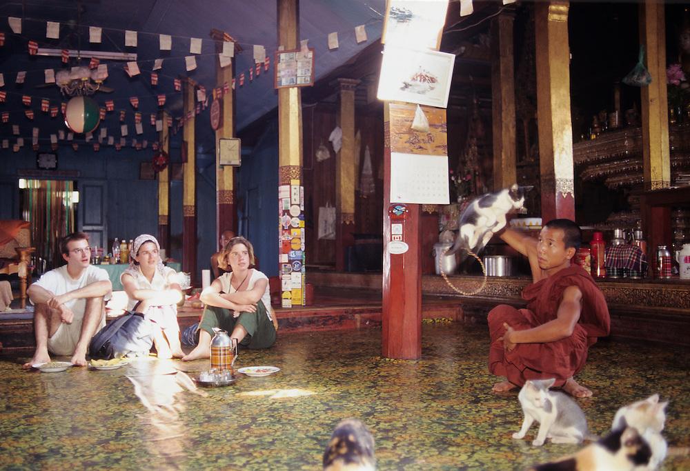 Nga Hpe Chaung Monastery, Jumping Cat Monastery, Shan State, Inle Lake, Myanmar