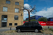 London black taxi cab artwork sculpture with a tree appearing to grow out of its roof in Silvertown, London, England, United Kingdom.