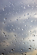 Raindrops on glass, Oxfordshire, United Kingdom RESERVED USE - NOT FOR DOWNLOAD -  FOR USE CONTACT TIM GRAHAM