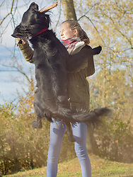 Girl holding stick and retriever jumping to catch