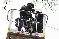 Steeple Claydon, UK. 23 February, 2021. A National Eviction Team bailiff in a cherry picker acting for HS2 Ltd cuts a line being used by an activist to transfer water to a tree house during an operation to evict activists opposed to the HS2 high-speed rail link from ancient woodland known as Poors Piece. The activists created the Poors Piece Conservation Project there in spring 2020 after having been invited to stay on the land by its owner, farmer Clive Higgins. Already, local village communities have been hugely impacted by HS2, with 550 acres of land seized including a large section of a nature reserve.