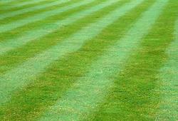 Striped mown lawn