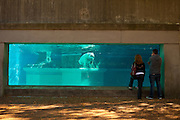 Polar bear exhibit at the Lincoln Park Zoo Chicago, IL, USA.