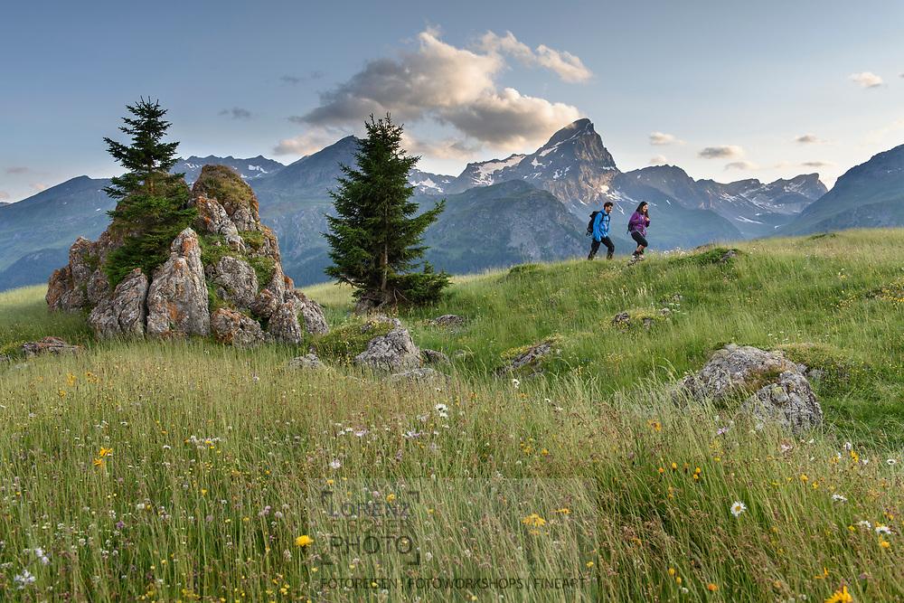 Ein Paar auf der Alp Flix an einem schönen Sommertag mit Piz Platta, Parc Ela, Mittelbuenden, Schweiz<br /> <br /> A couple on the Alp Flix on a nice Summer day with the Piz Platta in sight, Parc Ela, Grisons, Switzerland