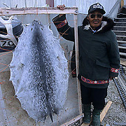 Canada, Nunavut Territory, Town elder standing next to seal skin. Igloolik.