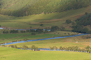 Aerial telephoto view of some bends in the River Conon, taken from one of the nearby hills.