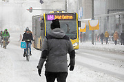 In Utrecht rijdt een meisje door de sneeuw terwijl een bus op de busbaan passeert. Nederland geniet van de eerste sneeuw sinds lange tijd.<br /> <br /> In Utrecht a woman rides in the snow. People in the Netherlands enjoy the first snow since years.