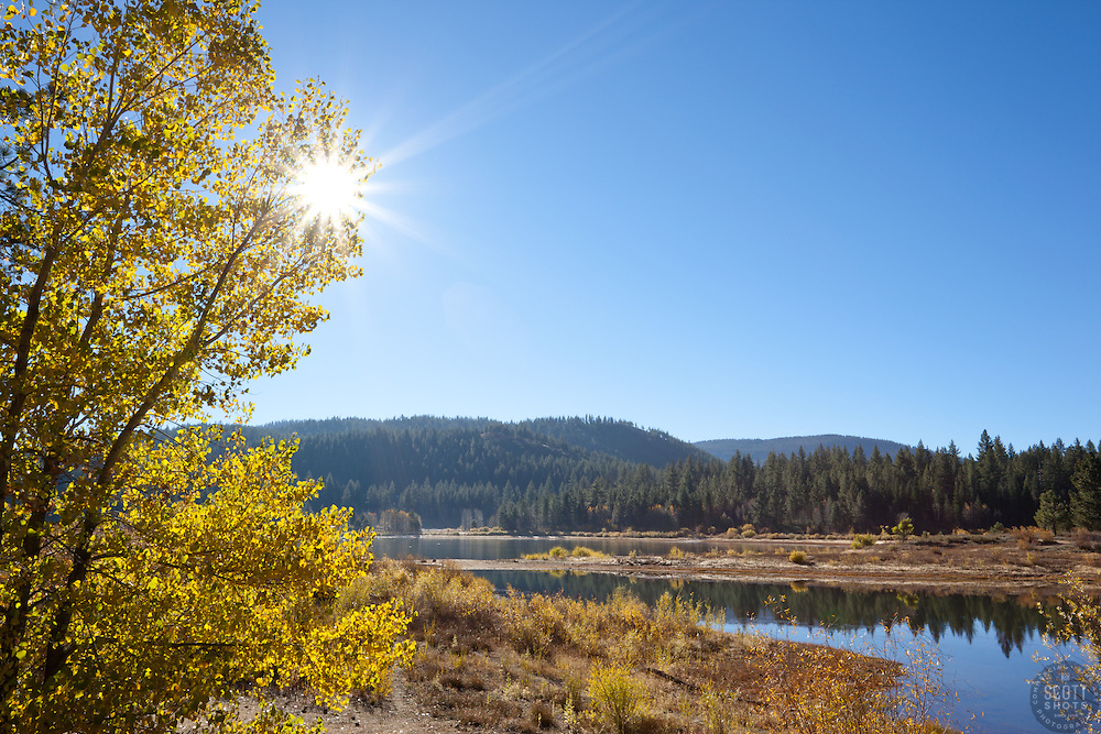 """""""Aspens at Spooner Lake"""" - These aspens and sun were photographed in the fall at Spooner Lake, Nevada."""