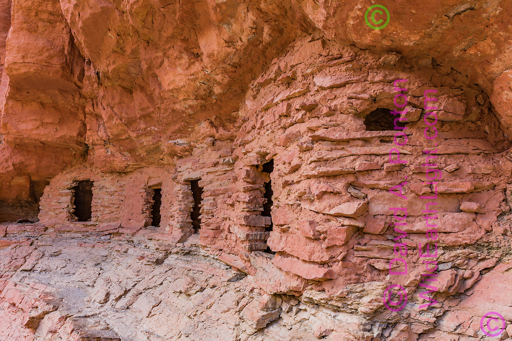 Nankoweap ruins with restoration of the door on the third room, photographed 9/16/2015, Grand Canyon National Park, © David A. Ponton