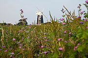 National Trust Tower Windmill near Wells-Next-the-Sea, Norfolk, United Kingdom