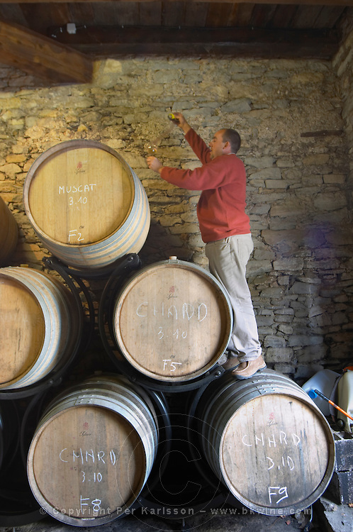 Jean-Christophe Piccinini Domaine Piccinini in La Liviniere Minervois. Languedoc. Barrel cellar. Drawing a sample with a pipette. France. Europe.