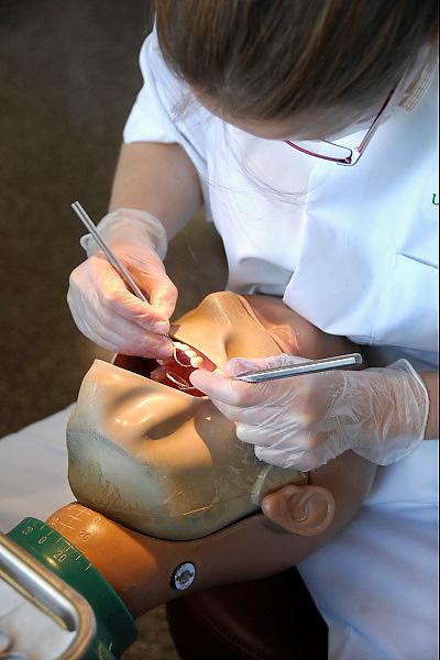 Nederland, Nijmegen, 11-10-2006Een student aan de faculteit tandheelkunde heeft prakticum in de prakticumzaal. Zij oefent op een fantoompop.Foto: Flip Franssen