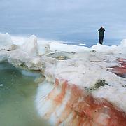A local guide searches for walrus. Nunavut Territory, Canada