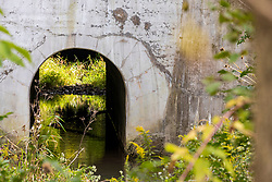 A small creek runs under a set of railroad tracks via an arch made of concrete